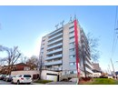 551 Eglinton Avenue East Community Thumbnail 1
