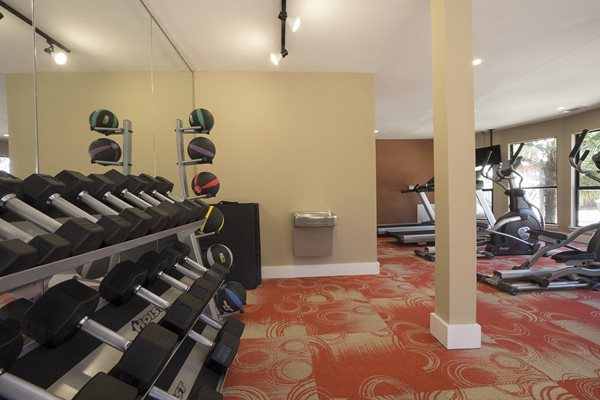 The Pointe at Preston Ridge New Gym with Free Weights