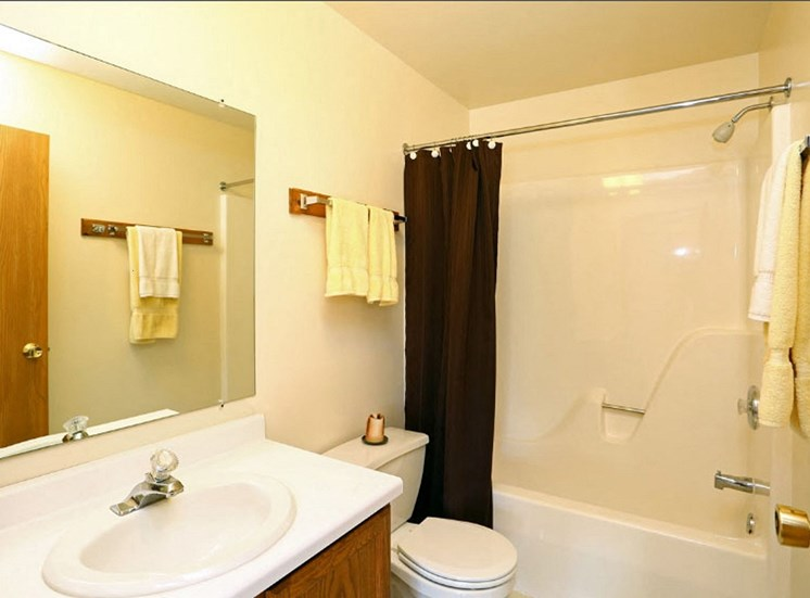 Bathroom Fitters at Eco Park, Illinois, 60115