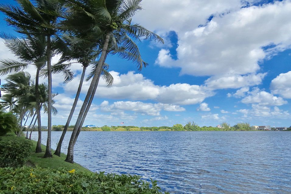 Miami Lakes photogallery 14