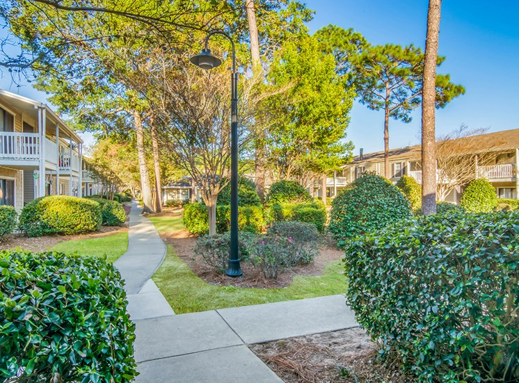 Woodcliff apartment residences and natural landscaping in Pensacola, Florida