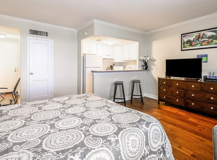 Studio apartment for rent at The Georgian in New Orleans
