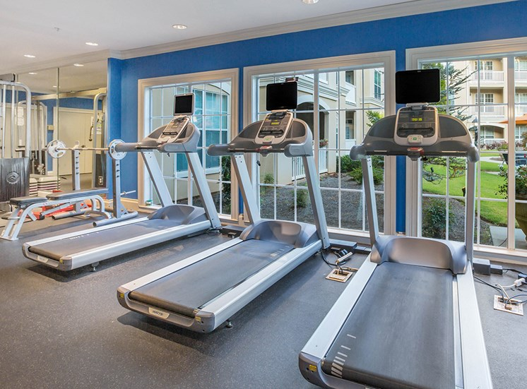 Treadmills in The Savoy's 24-hour fitness center