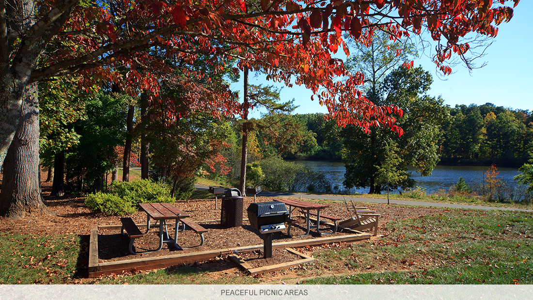North Carolina apartment complex with peaceful picnic areas