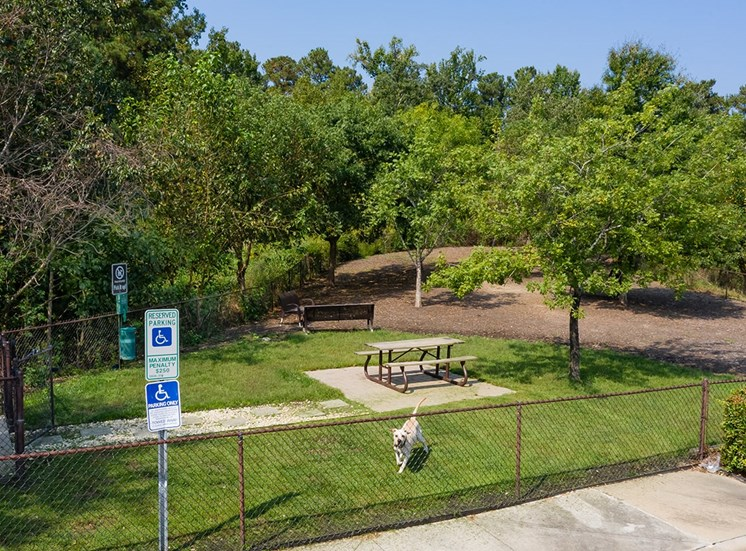 Perry Point apartments dog park in Raleigh, North Carolina