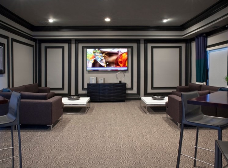 Media Room Picture