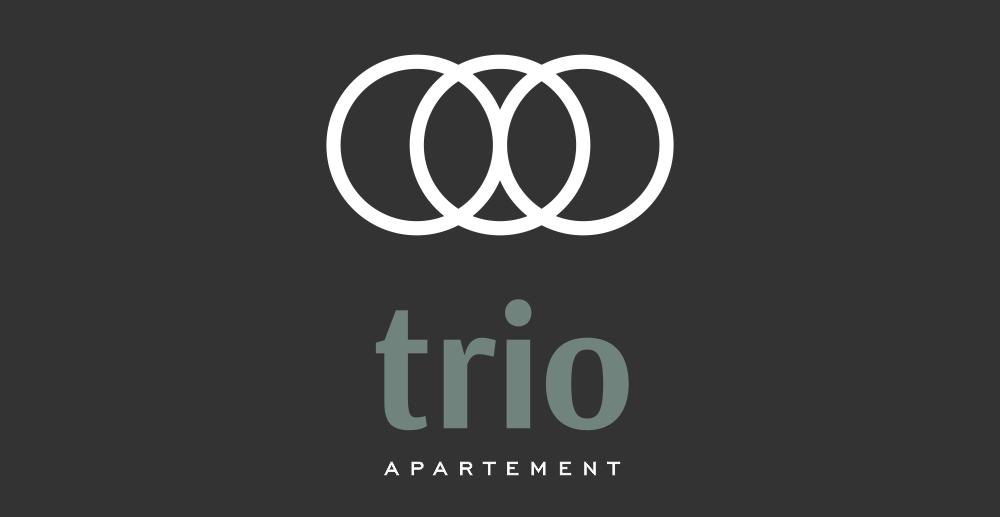 Austin Property Logo 1