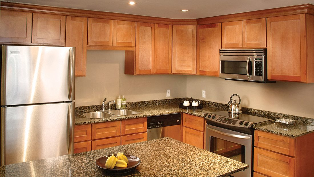 Energy Efficient Appliances & Light Fixtures