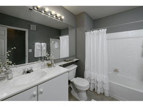 Bathroom - toilet, shower, and sink