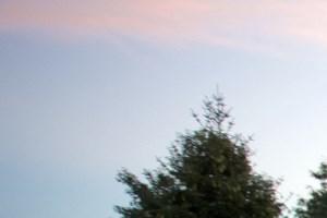 Avon Lake banner 1