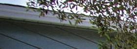 Menlo Park homepagegallery 1