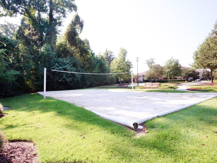 Volleyball Court Picture