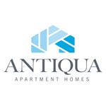 antiqua-800x800