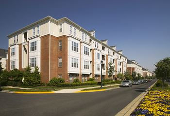 105 King Farm Blvd, F101 1-3 Beds Apartment for Rent Photo Gallery 1