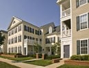 The Residences at King Farm I Community Thumbnail 1
