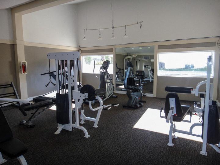 Palmera Pointe Condos Gym