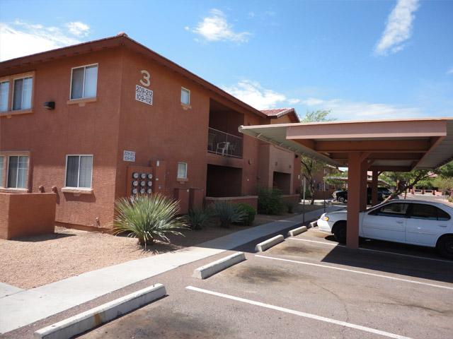Phoenix photogallery 8