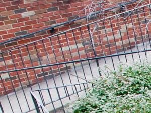 The Washington Apartments background 3