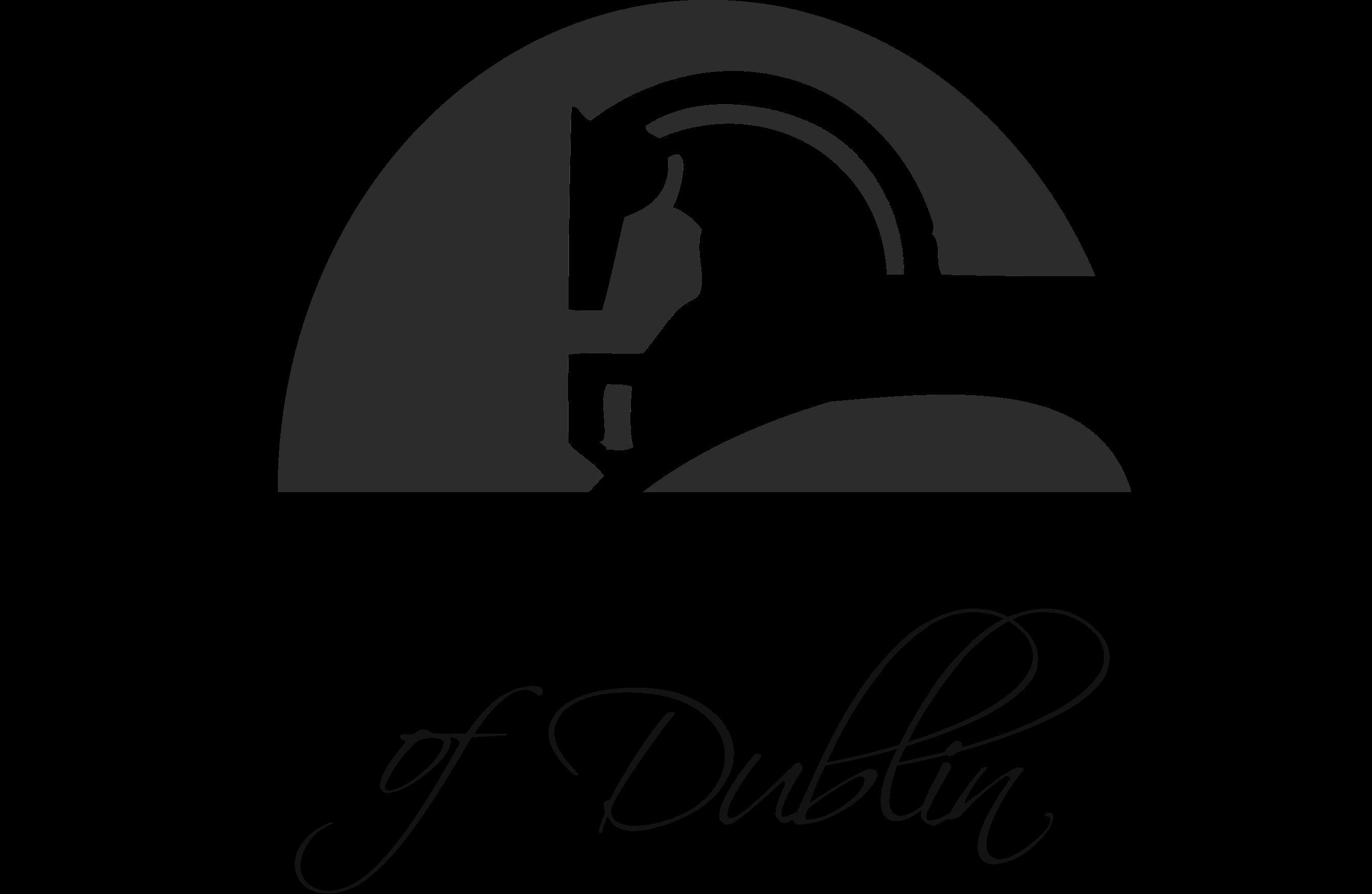 Dublin Property Logo 1
