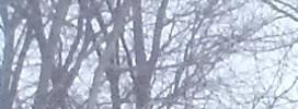 Reynoldsburg homepagegallery 6