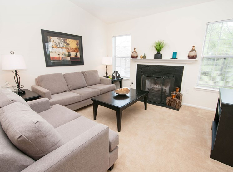 Luxurious Living Rooms at Chase Heritage Apartments, Sterling, VA,20164