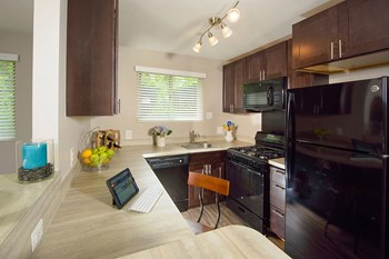 308 Stevenson Lane 1-2 Beds Apartment for Rent Photo Gallery 1
