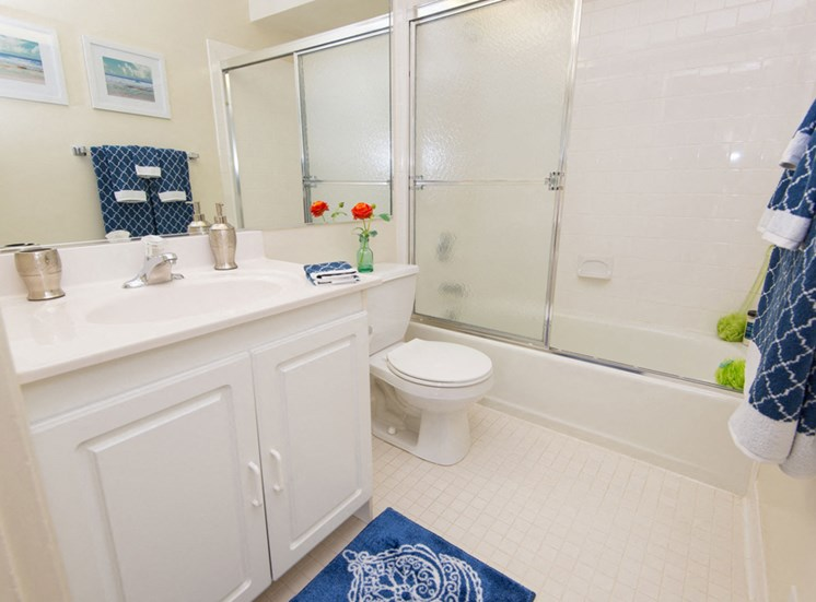 Walk-In Shower with Ceramic Tile at Falls Village Apartments, 6222 Green Meadow Parkway, Baltimore, MD