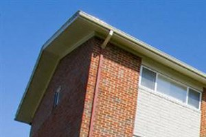 8509 Old Harford Road 1-3 Beds Apartment for Rent Photo Gallery 1