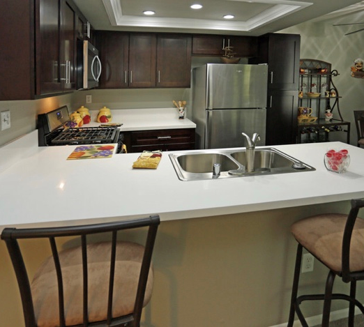 Newly Renovated Kitchens with New Cabinets, Quartz Countertops and Energeny Efficient Stainless Steel Appliances