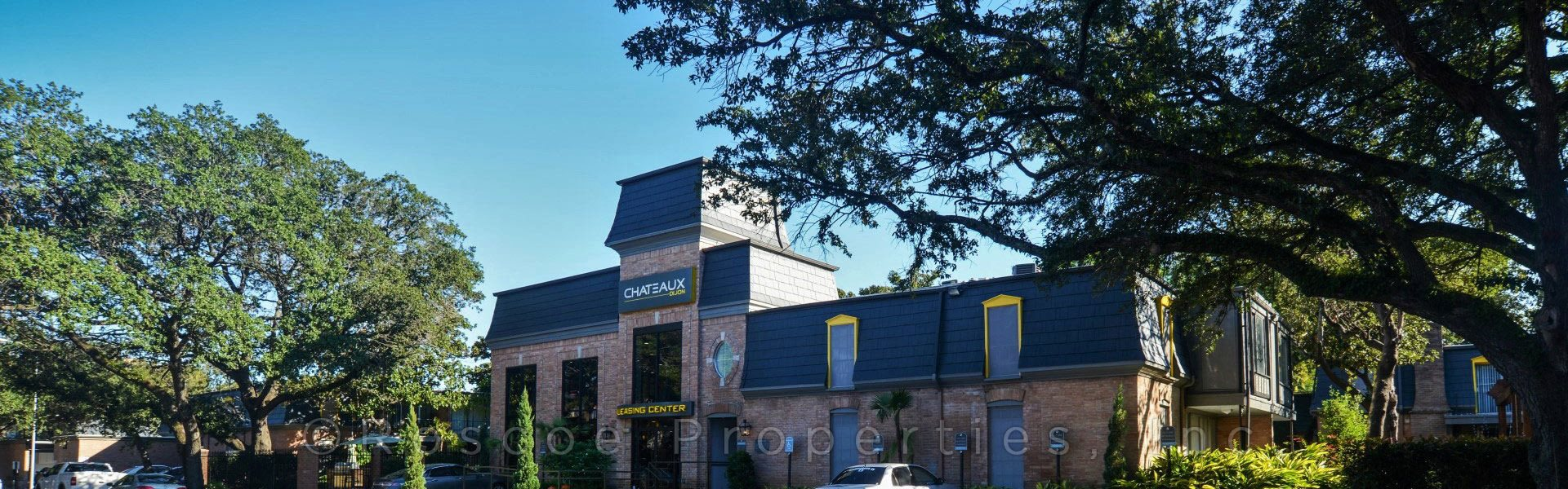 Chateaux Dijon banner 1