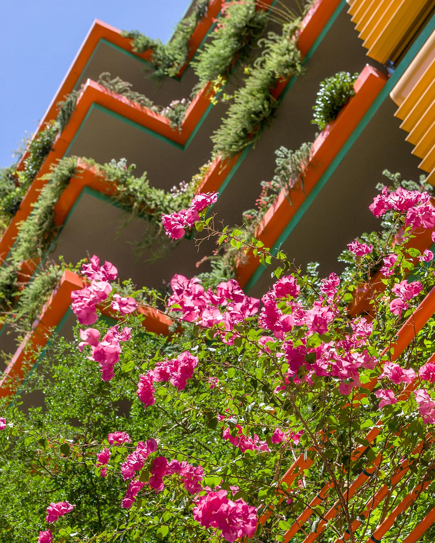 Scottsdale photogallery 23
