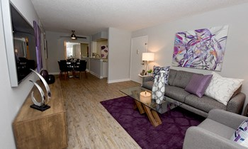 2901 North Dale Mabry Hwy Studio-2 Beds Apartment for Rent Photo Gallery 1