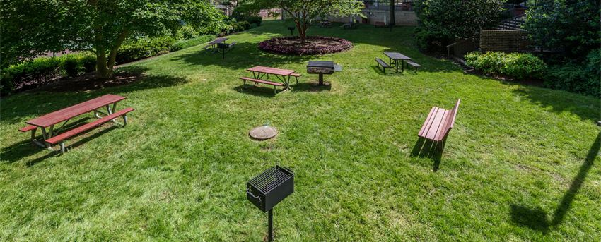 ashby at mclean apartments: grill area