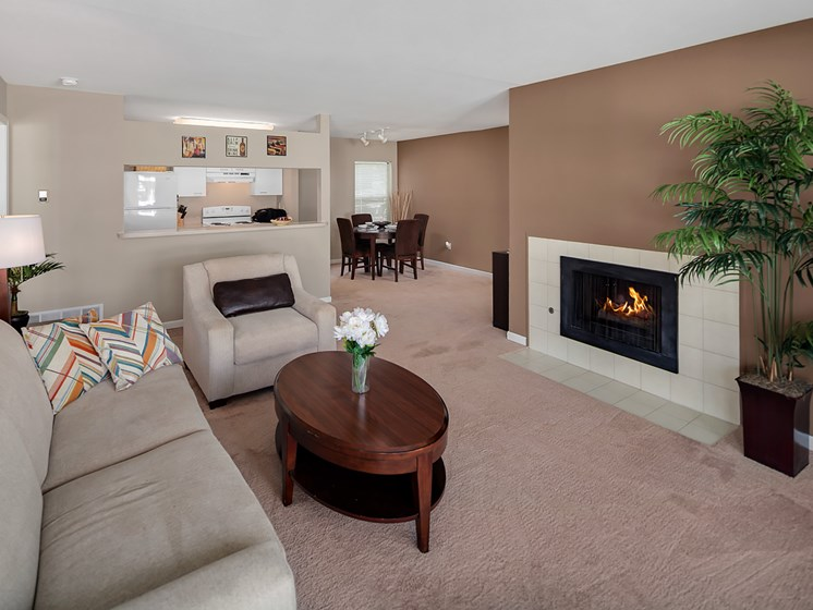 Fireplaces At Drakes Pond Apartments, Kalamazoo, MI