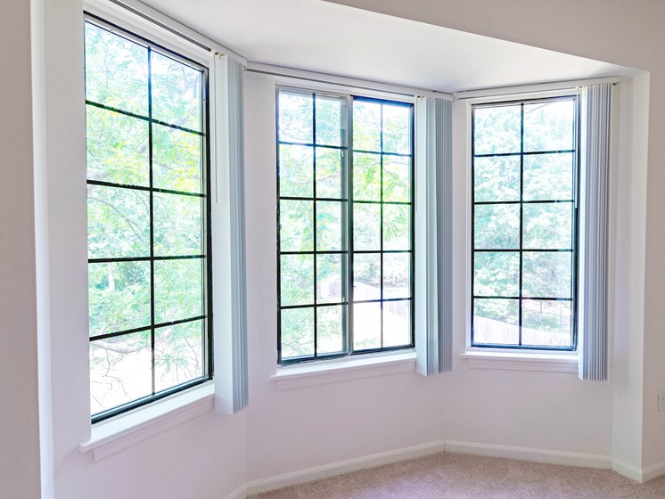 Large Window Space, Ashton Pines in Waterford, MI