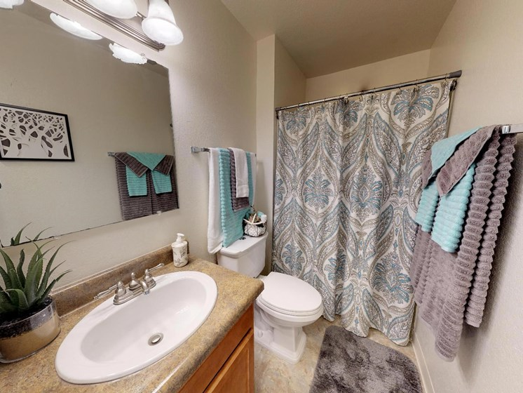 Spacious Bathrooms at Castle Pointe Apartments in East Lansing, MI