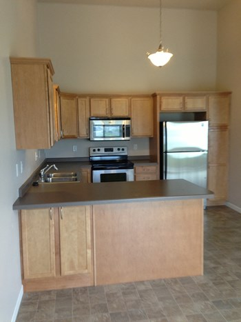 4696 47Th St S 3 Beds Townhouse for Rent Photo Gallery 1