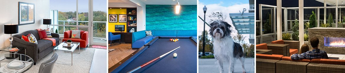 Luxury rooms and amenities at Verde Pointe, Arlington, VA, 22201