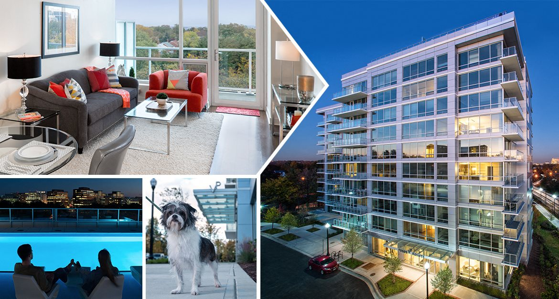 Fabulous Court House Clarendon Arlington Verde Pointe Apartments Interior Design Ideas Clesiryabchikinfo
