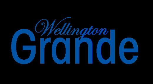 Longview Property Logo 3