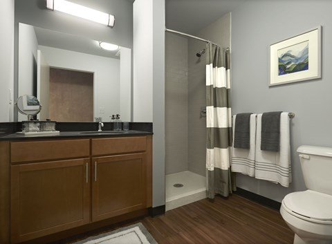 Oversized showers in all units at 618 South Main 48104.