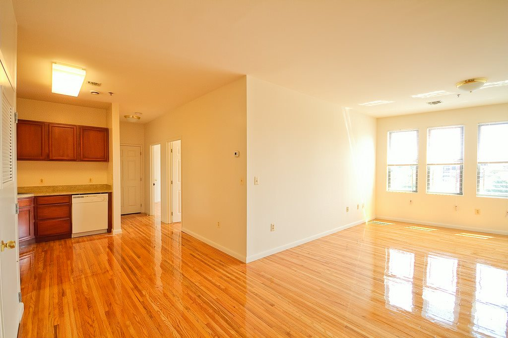 Living room and kitchen with hardwood floors