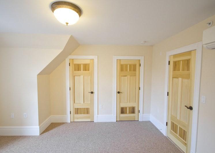 Living room and closet/room doors