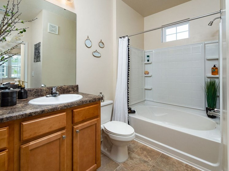 Bathroom With Extra Storage Space at Abberly Crossing Apartment Homes, South Carolina, 29456