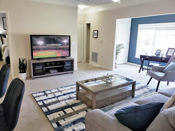 Spacious Living Room With Television at Abberly Grove Apartment Homes, Raleigh, North Carolina