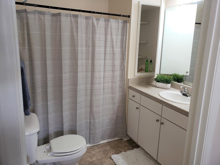 Bathroom with Storage at Abberly Grove Apartment Homes, Raleigh, 27610