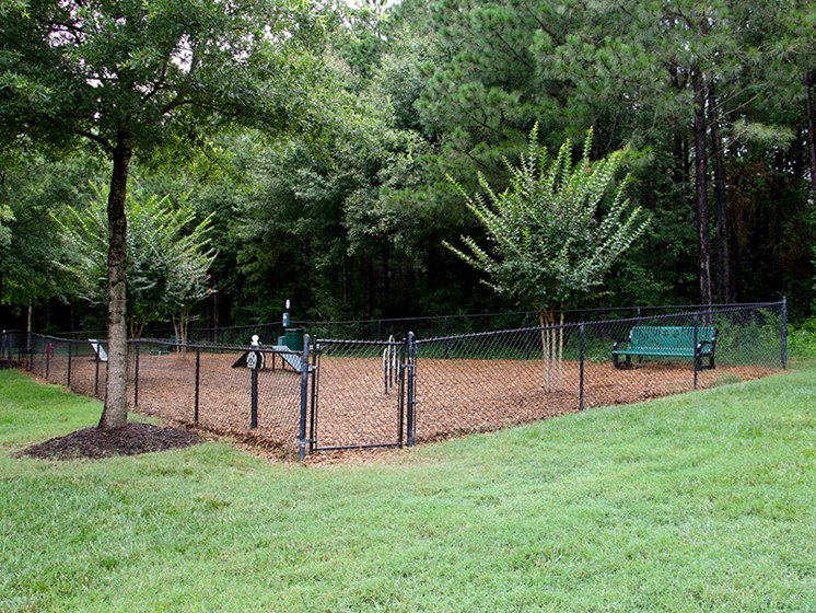 Mature trees and grass areas create a relaxing atmosphere at Abberly Grove Apartment Homes, North Carolina