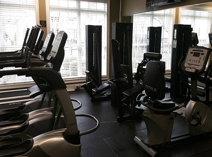 Strength Studio with Free Weights & Cable Machines at Abberly Grove Apartment Homes, Raleigh, NC 27610