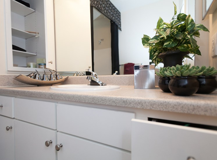 Feature upgraded bathrooms at Abberly Grove Apartment Homes, Raleigh, 27610