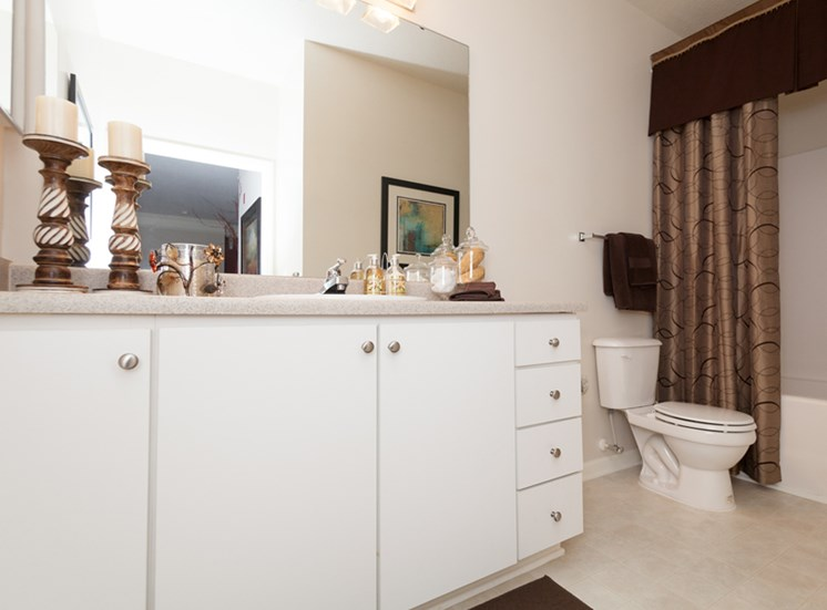 Bathroom offers plenty of space and lighting at Abberly Grove Apartment Homes, Raleigh